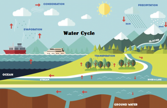World Water Day Water Cycle